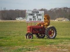 Gorillla Advertising Chicken Dance (r.w.dawson) Tags: stmaryscounty maryland md gorilla tractor chickendance farm rural advertising funny