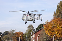 Autumn has arrived (Dan Kemsley) Tags: aac army air corps wildcat aw159 augusta westland tactical supply wing dan kemsley