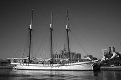 Tall Ship, Toronto Harbourfront (C. Wendorf) Tags: 1018mm canon40d canon 40d ship boat harbourfront toronto blackandwhite