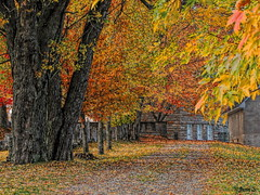 Promenade (Jean S..) Tags: path trees building church autumn fall windows outdoor leaves red yellow
