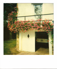 Flowered balcony (Lux Obscura) Tags: memories polaroid film instant flowers balcony sunny 80ties eighties dusty opelkadett geranium
