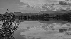 Autumn Leaves (Jim Skarli) Tags: bw blackandwhite mono monochrome mountain norway serene water lake alpinelake fall silence nature september fjell hst vann sj