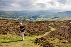 Offa's Dyke Path Days 10-12 (45) (ChrisJS2) Tags: offasdykepath offasdyke walkingoffasdykepath outdoors clwydianrange offasdykepathnorth