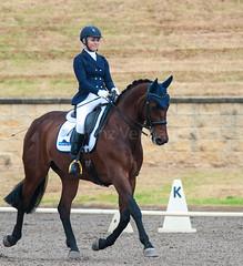 161023_Aust_D_Champs_Sun_Med_4.2_6240.jpg (FranzVenhaus) Tags: athletes dressage australia siec equestrian riders horses performance event competition nsw sydney aus
