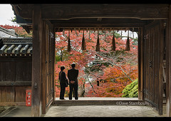 Looking out at fall, Bishumondo Temple, Kyoto, Japan (jitenshaman) Tags: asia asian travel destination worldlocations orient oriental japan japanese kyoto fall autumn leaves colours colors colour foliage fallfoliage maplemapletree trees tree kaede momiji deciduous season seasons tourism temple grounds nature bishumondo door frame gate
