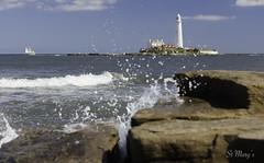 St Mary's (Ellieslion) Tags: northeastengland ellieslion tallship coastline whitleybay stmaryslighthouse