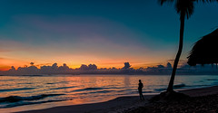 Saying goodbye to the afternoon in Bávaro Beach Punta Cana (The Sergeant AGS (A city guy)) Tags: puntacana santodomingo rdominicana travelling tourism seashore seascape sunset beach beachscape colors sea walking exploration