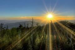 Kiss of Light (gatorinsc) Tags: smoky mountains sunset starburst tennessee pine tree sky national park parks sun clingmans dome