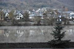 Germany, Moselle - Mosel - Moezel (LidyvN) Tags: river mosel moselle moezel water winter stream cold damp morning tree village smoke hill