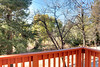 Front Deck View 2 (junctionimage) Tags: 993 knickerbocker