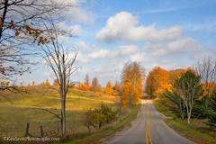 Color Tour ... rural mural II (Ken Scott) Tags: countryroad rural yellowline leelanau michigan usa 2016 november fall autumn 45thparallel hdr kenscott kenscottphotography kenscottphotographycom colortour fallcolors