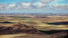 Miles And Miles (Pedalhead'71) Tags: garfield washington unitedstates us palouse steptoe steptoebutte landscape