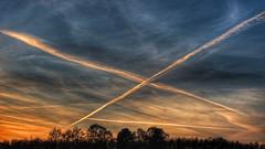 Epilogue (explored) (RainerSchuetz) Tags: geo:lat=5150799942 geo:lon=939966011 geotagged sunset sundown trees clouds contrail jet trails