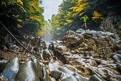 RUN: Clarendon Gorge (Green Mountain Film Project) Tags: active autumn clarendon colors epic fall film goingover gorge green hummel josh lifestyle longtrail mist mountain moving octoberlt project river rocks run runner running technical terrain trail water