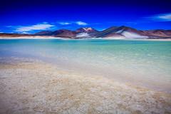 Chile 2013-2821 (sebtac) Tags: chile2013 chile 2013 outdoor reservanacionallosflamencos