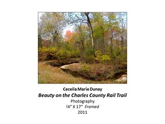 """Beauty on the Charles County Rail Trail • <a style=""""font-size:0.8em;"""" href=""""https://www.flickr.com/photos/124378531@N04/31178558555/"""" target=""""_blank"""">View on Flickr</a>"""