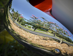 Summer Car Show Reflection (Carolyn Marshall Photography) Tags: car carshow olds oldsmobile 53 1953 cars antique antiques old automobiles vehicle vehicles bumper chrome reflection reflecting summer sky colorful trees red mirror blue transportation brandon florida carolynmarshall photography tampaphotographers macros close closeup marshall