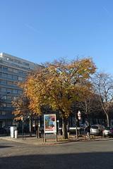 Boulevard Pasteur @ Montparnasse @ Paris (*_*) Tags: paris france europe city autumn fall november 2016 cold montparnasse