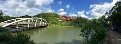 Greenlake (Jimweaver) Tags: sunny     bridge lake temple sky clouds nature  blue panorama