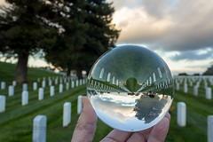 Crystal Ball GG Cemetery _ IMG_1001 (photon79) Tags: crystalball cemetery goldengatenational