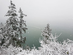 Stanley Park 20161218_144309 (Doina Silvan) Tags: stanleypark boat snow winter vancouver prospectpoint ocean