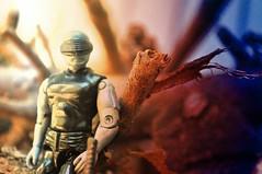 Snake at home (skipthefrogman) Tags: shadow storm vintage real eyes snake joe american hero custom 1985 gi