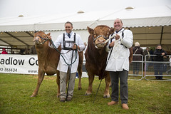 Kent_County_Show_2014_004