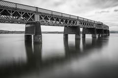 Tay Rail Bridge (MF65) Tags: bridge sea scotland unitedkingdom dundee rail d800 2014