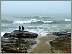 High Tide On the Rocks (Suzanham) Tags: ocean sea beach fog rocks surf waves foggy hightide thegalaxy yachatsoregon flickraward panasonicfz150