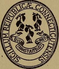 Anglų lietuvių žodynas. Žodis sphecoidea reiškia spechoidas lietuviškai.