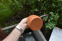 DSC_0253 (Andrea Carloni (Rimini)) Tags: torino piemonte wateringcan palazzomadama wateringpot innaffiatoio museodarteantica museocivicodarteantica museodipalazzomadama