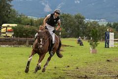 DSC00391_s (AndiP66) Tags: horse macro sports sport schweiz switzerland sony nevada luzern august sp di if alpha tamron concours pferd equestrian derby f28 solothurn ld horsejumping 70200mm wettbewerb 2014 springen kantonsolothurn springreiten cantonsolothurn wolhusen andreaspeters pferdespringen grueb martinameyer 77m2 a77ii ilca77m2 77ii 77markii slta77ii dubenmoos