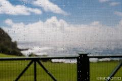 Somewhat Contained (Nick Kanta) Tags: ocean sky color rain clouds hawaii drops nikon pacific maui screen hana hawaiianislands d90 tamron1750