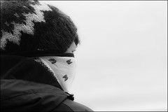 Iceland (Garry Corbett) Tags: iceland reykjavik whales icelandicart bluejazzbuddha cgarrycorbett2014