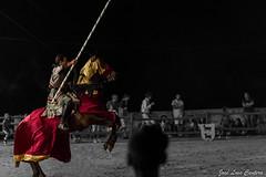 Torneio de armas a cavalo (Fotografando a minha vida) Tags: color portugal branco canon 50mm medieval preto feira alentejo cor cavalo elvas torneio cavaleiro 550d
