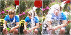 One Grandson Drenching Another (DeeMac) Tags: charity wet water collage 50mm 50mm14 pouring als drenching motorneuronedisease d700 threeimages bucketchallenge alsbucketchallenge onegrandsondrenchinganother
