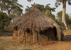 Anuak Traditional Hut In Abobo, The Former Anuak King Village, Gambela Region, Ethiopia (Eric Lafforgue) Tags: poverty africa travel house building home horizontal architecture outdoors photography community mural day pattern exterior village outdoor sudan traditional border straw nobody nopeople tribal structure hut homemade simplicity thatch homestead tradition thatchedroof ethiopia tribe cultures domesticlife anthropology developingcountries thatched lifestyles hornofafrica eastafrica thatchedhut ruralscene fulllenght colorpicture nonurbanscene colourimage gambela indigenousculture anuak africanculture abobo tukul gambella builtstructure residentialstructure anyuak colourpicture agnwak anywaa ethio1400153