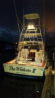 Amelia Island Fishing Charters AC Charters