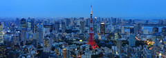 Tokyo Tower and Tokyo Skyline just past sunset (Jeffrey B.) Tags: travel japan tokyotower travelphotography foreigntravel tokyoskyline