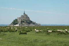 Mont-Saint-Michel - atana studio (Anthony SJOURN) Tags: studio moulin day sale champs pre anthony normandie mouton montsaintmichel herbe baie balancoire paturage atana sjourn pwpartlycloudy