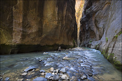 Hiking the Narrows - Zion National Park - Utah (helikesto-rec) Tags: river utah zion zionnationalpark virginriver thenarrows
