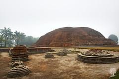 India_0536