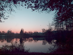 MORNING LIGHT PB141392 (hans 1960) Tags: outdoor nature natur wasser water trees bäume pond weiher licht light spiegelung mirrow himmel sky fall blätter leaves germany landschaft landscape