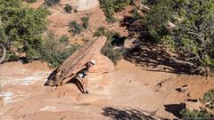 20160917 5DIV Zion Horseshoe Antelope 889 (James Scott S) Tags: hurricane utah unitedstates us travel wanderlust landscape lrcc canon 5div 5d4 mark iv 5d eos desert zion national park nps antelope canyon lower