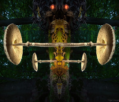 Emperor of the mushrooms - mirror worlds (Ralph Oechsle) Tags: spiegelwelten mirrorworlds mushroom lightpainting paintingwithlight malenmitlicht mystic mirror mirrored