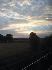 Not a bad view (My photos live here) Tags: commuting train south eastern countryside tonbridge kent england sky cloud sunrise moring view from a trees window