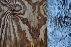 Re Ply (Joanne Dale) Tags: joannedale nikond7200 lewiston newyork usa plywood texture paint aging weathering natural painted abstract zebra pattern peeling blue