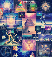 Collage of overs of New Age books and self-help volumes (The Wild Voice) Tags: oprahwinfrey joelosteen tonyroberts selfhelpbooks covers business money success yoga newage falsereligions doctrines relationships drphil thesecret lawofattraction new age satanic pyramids pyramid horoscope thewildvoice wild voice illuminati freemasonry magic occult babylon egypt