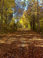 C'est l'automne (ValMi2012) Tags: hdrenfrancais