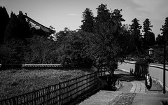 Nara B/W (7) - A Monk Wandering Around (Patrick Vierthaler) Tags:   todaiji toudaiji nara park japan kansai bw monochrome